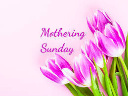 "The words ""Mothering Sunday"" in pink script to the left of pink-purple tulips."